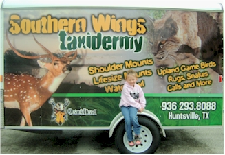 Southern Wings Taxidermy Trailer